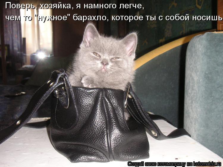 """Котоматрица: Поверь, хозяйка, я намного легче, чем то """"нужное"""" барахло, которое ты с собой носишь"""
