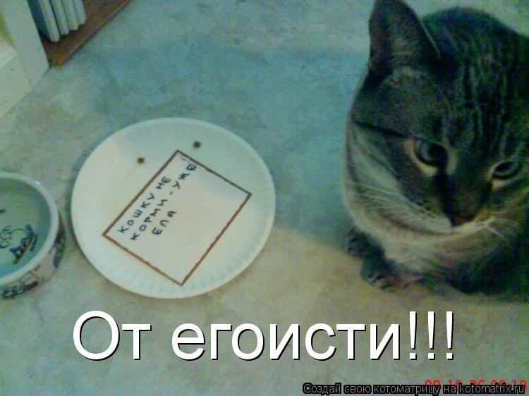 Котоматрица: От егоисти!!!