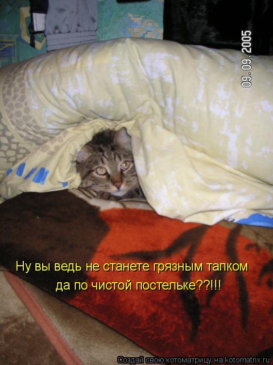 Котоматрица: Ну вы ведь не станете грязным тапком да по чистой постельке??!!!