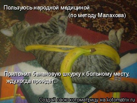 Котоматрица: Пользуюсь народной медициной  (по методу Малахова) Приложил банановую шкурку к больному месту, жду,когда пройдёт..