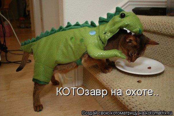 Котоматрица: КОТОзавр на охоте..