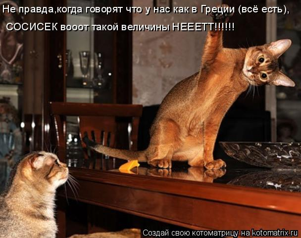 Котоматрица: Не правда,когда говорят что у нас как в Греции (всё есть), СОСИСЕК вооот такой величины НЕЕЕТТ!!!!!!