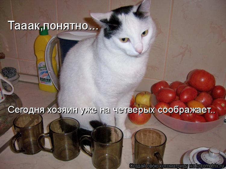 http://kotomatrix.ru/images/lolz/2009/12/17/435600.jpg