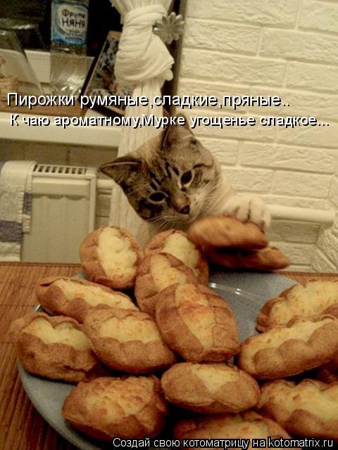 Котоматрица: Пирожки румяные,сладкие,пряные.. К чаю ароматному,Мурке угощенье сладкое...