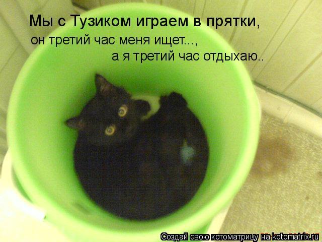 Котоматрица: Мы с Тузиком играем в прятки, он третий час меня ищет..., а я третий час отдыхаю..