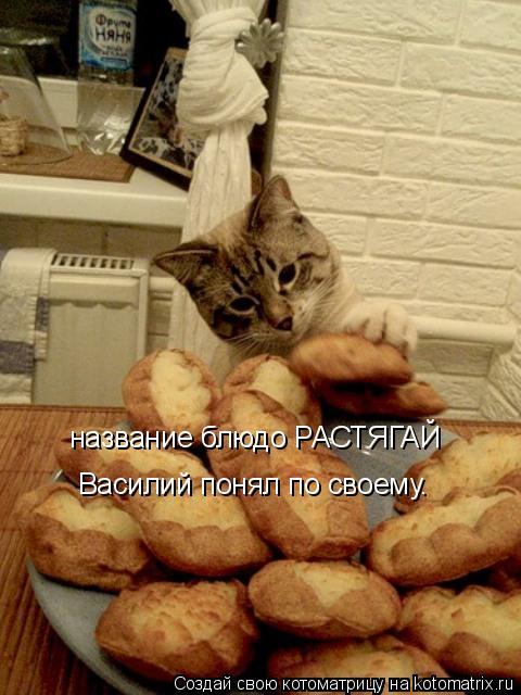 Котоматрица: название блюдо РАСТЯГАЙ  Василий понял по своему.