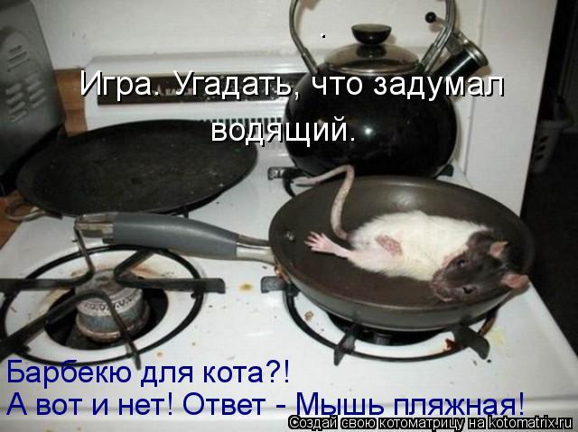 Котоматрица: . Игра. Угадать, что задумал водящий. Барбекю для кота?! А вот и нет! Ответ - Мышь пляжная!
