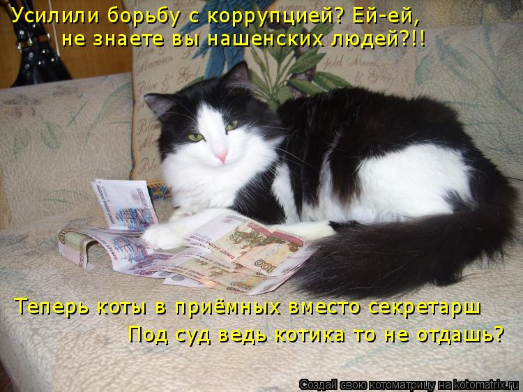 Котоматрица: Усилили борьбу с коррупцией? Ей-ей, не знаете вы нашенских людей?!! Теперь коты в приёмных вместо секретарш Под суд ведь котика то не отдашь?