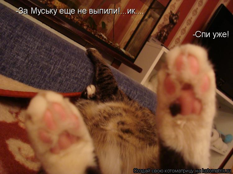 Котоматрица: -За Муську еще не выпили!...ик.... -Спи уже!