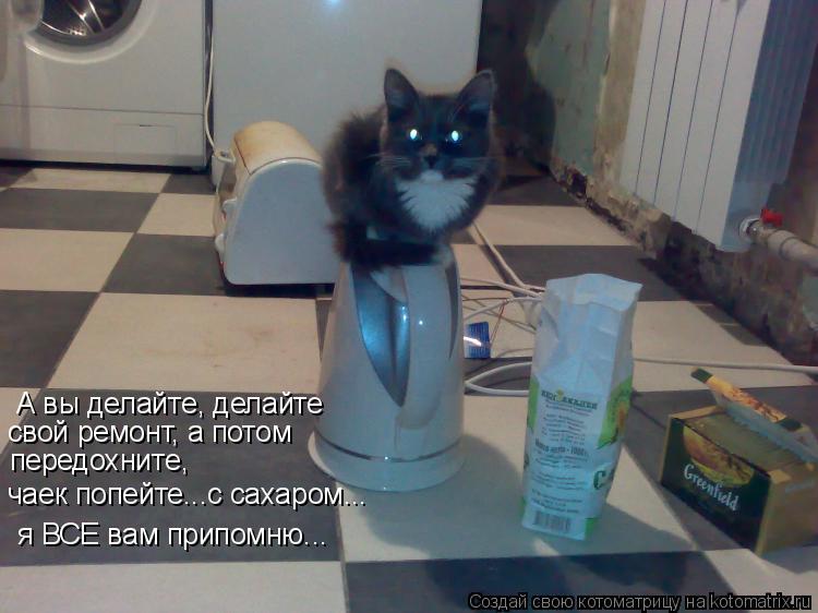 Котоматрица: А вы делайте, делайте свой ремонт, а потом  передохните, чаек попейте...с сахаром...  я ВСЕ вам припомню...