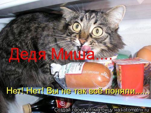 Котоматрица: Дедя Миша.... Нет! Нет! Вы не так всё поняли......