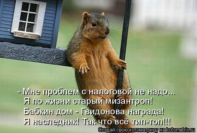 Котоматрица: - Мне проблем с налоговой не надо...  Я по жизни старый мизантроп! Бабкин дом - Гвидонова награда! Я наследник! Так что всё тип-топ!!!