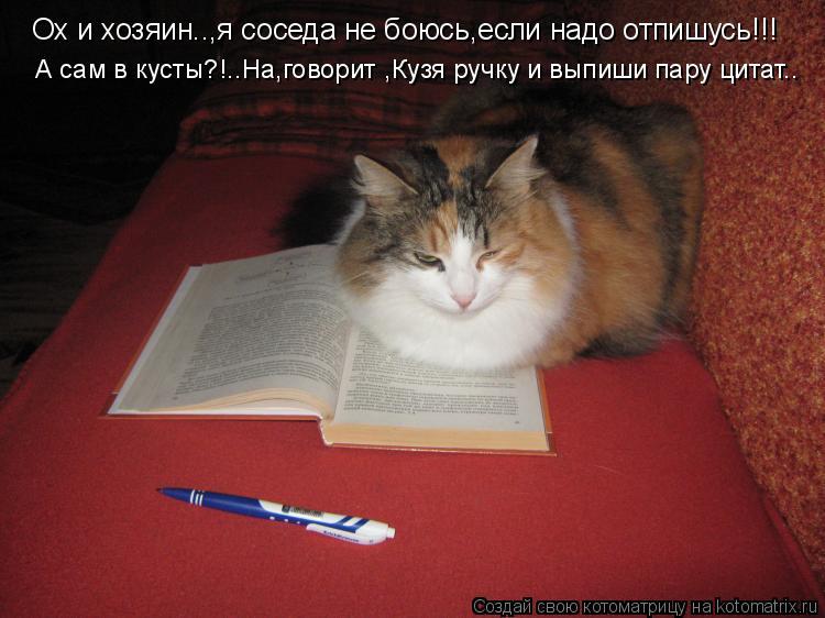 Котоматрица: Ох и хозяин..,я соседа не боюсь,если надо отпишусь!!! А сам в кусты?!..На,говорит ,Кузя ручку и выпиши пару цитат..