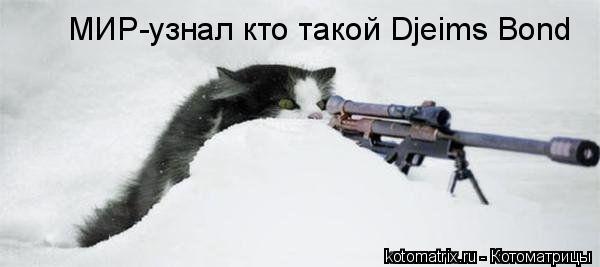 Котоматрица: МИР-узнал кто такой Djeims Bond