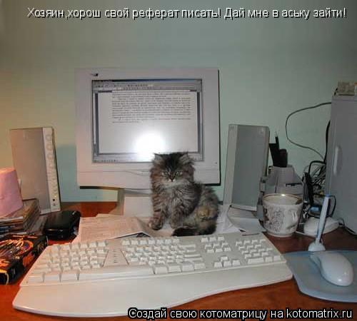 Котоматрица: Хозяин,хорош свой реферат писать! Дай мне в аську зайти!