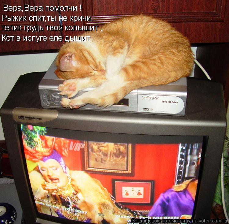 Котоматрица: Вера,Вера помолчи ! Рыжик спит,ты не кричи. телик грудь твоя колышит , Кот в испуге еле дышит.