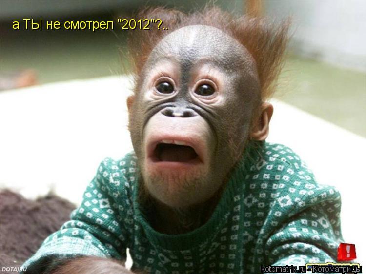 "Котоматрица: а ТЫ не смотрел ""2012""?.."
