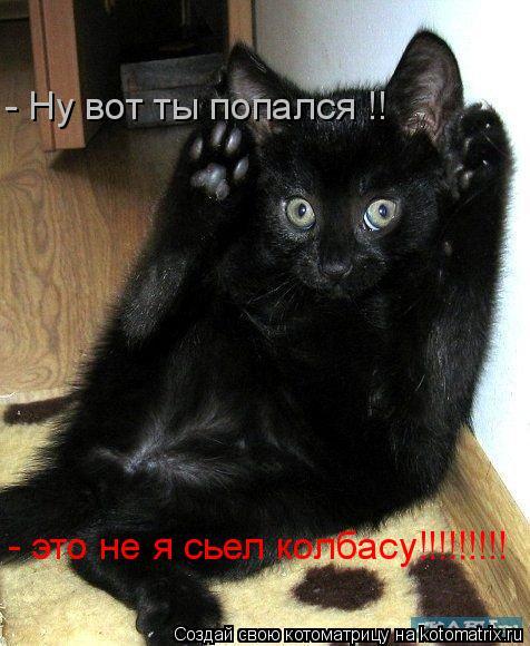 Котоматрица: - Ну вот ты попался !! - это не я сьел колбасу!!!!!!!!!