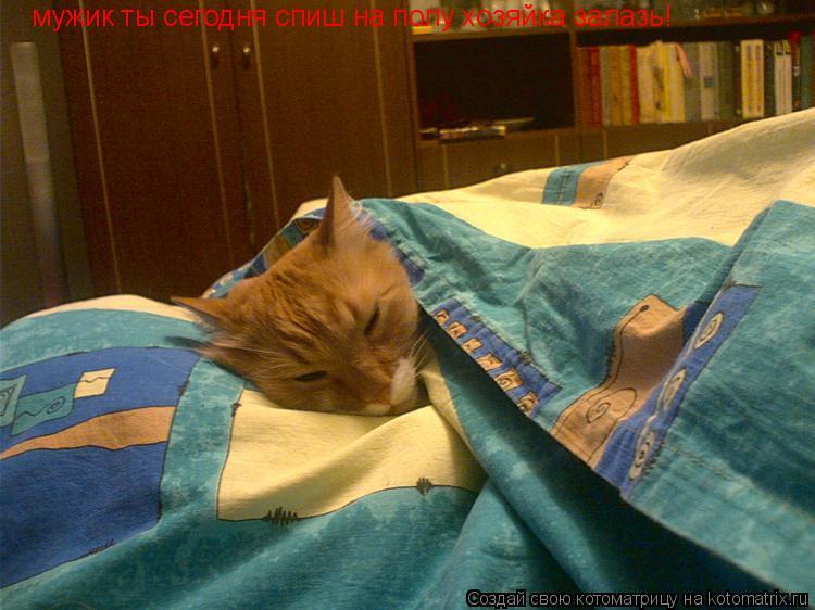 Котоматрица: мужик ты сегодня спиш на полу хозяйка залазь!