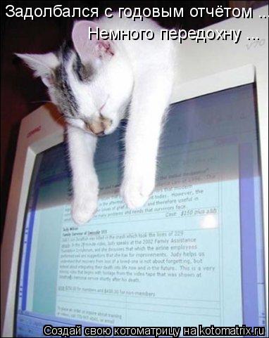 Котоматрица: Задолбался с годовым отчётом ... Немного передохну ...