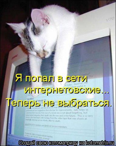 Котоматрица: Я попал в сети интернетовские... Теперь не выбраться.