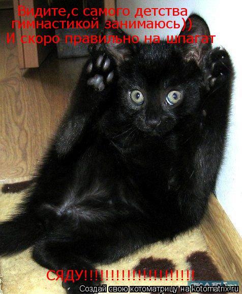 Котоматрица: Видите,с самого детства Видите,с самого детства гимнастикой занимаюсь)) И скоро правильно на шпагат СЯДУ!!!!!!!!!!!!!!!!!!!!!