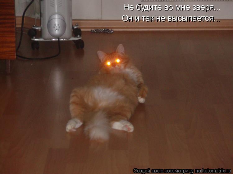 Котоматрица: Не будите во мне зверя... Он и так не высыпается...