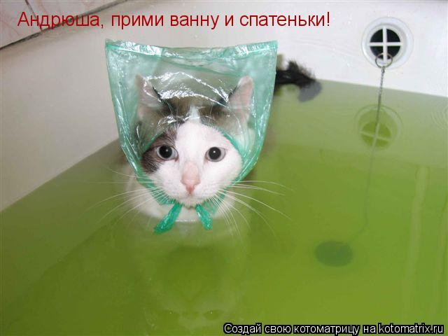 Котоматрица: Андрюша, прими ванну и спатеньки!