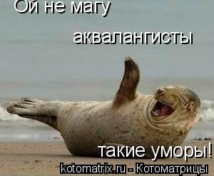 Котоматрица: Ой не магу аквалангисты такие уморы!