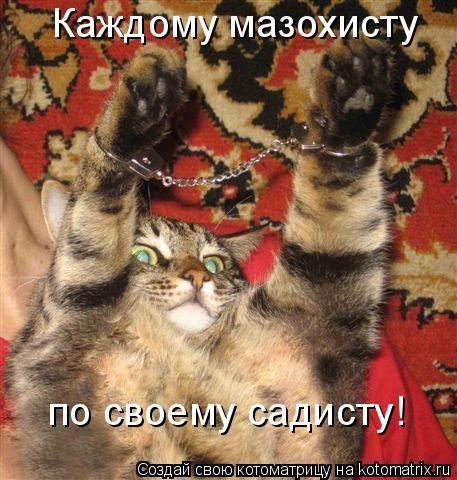 Котоматрица: Каждому мазохисту  по своему садисту!