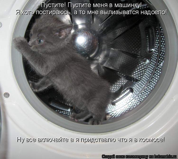 Котоматрица: - Пустите! Пустите меня в машинку!  Я хоть постираюсь, а то мне вылизыватся надоело! Ну все включайте а я придставлю что я в космосе!