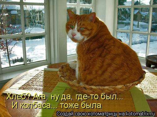 Котоматрица: Хлеб? Ага, ну да, где-то был... И колбаса... тоже была