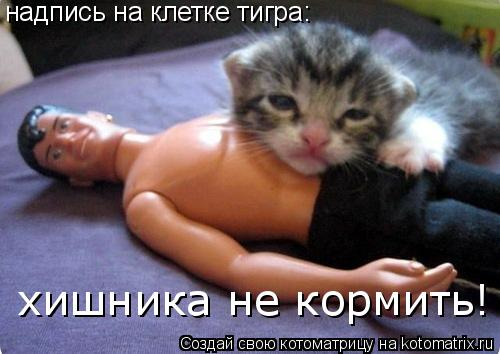 Котоматрица: надпись на клетке тигра: хишника не кормить!