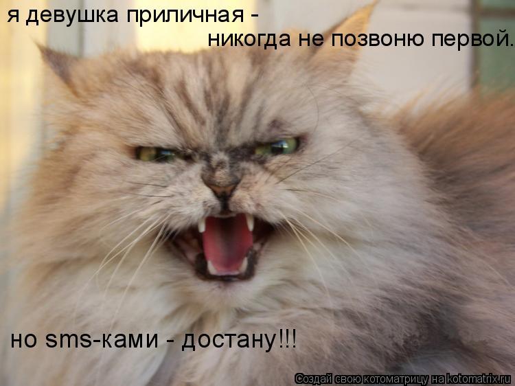 Котоматрица: я девушка приличная -  никогда не позвоню первой. но sms-ками - достану!!!