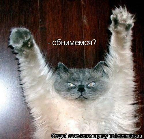 Котоматрица: - обнимемся?