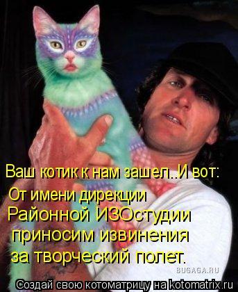 Котоматрица: От имени дирекции  приносим извинения  за творческий полет. Районной ИЗОстудии  Ваш котик к нам зашел..И вот: