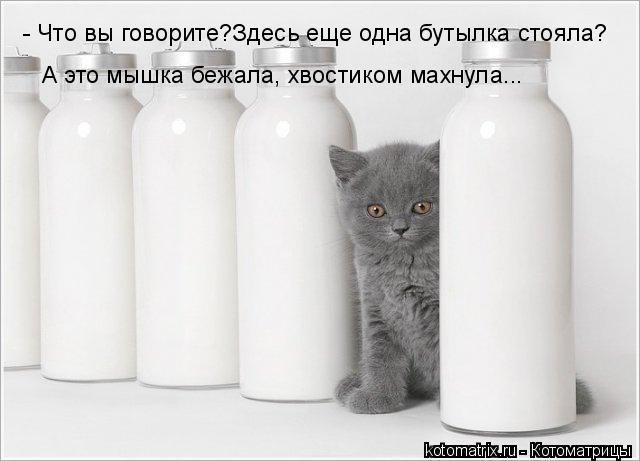 Котоматрица: - Что вы говорите?Здесь еще одна бутылка стояла? А это мышка бежала, хвостиком махнула...