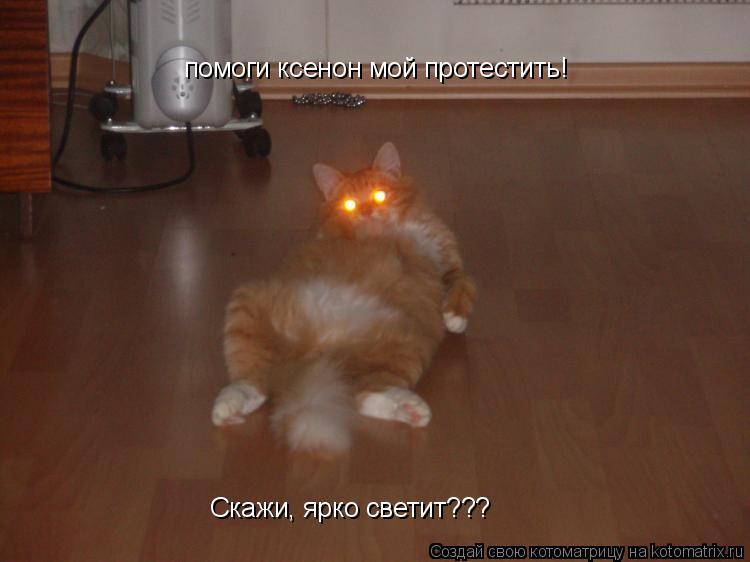 Котоматрица: помоги ксенон мой протестить! Скажи, ярко светит???