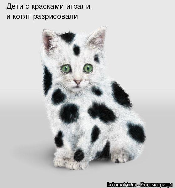 Котоматрица: Дети с красками играли, и котят разрисовали