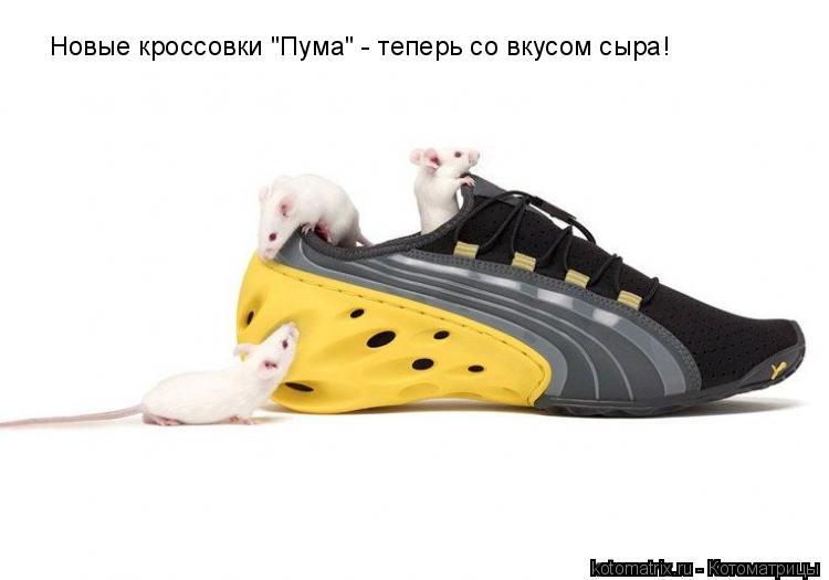 """Котоматрица: Новые кроссовки """"Пума"""" - теперь со вкусом сыра!"""