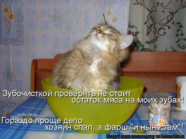 "Котоматрица: Зубочисткой проверять не стоит  остаток мяса на моих зубах! Гораздо проще дело: хозяин спал, а фарш ""и ныне там""!"