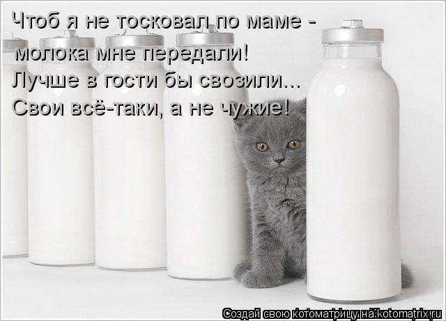 Котоматрица: Чтоб я не тосковал по маме - молока мне передали! Лучше в гости бы свозили... Свои всё-таки, а не чужие!