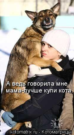 Котоматрица: А ведь говорила мне мама-лучше купи кота.