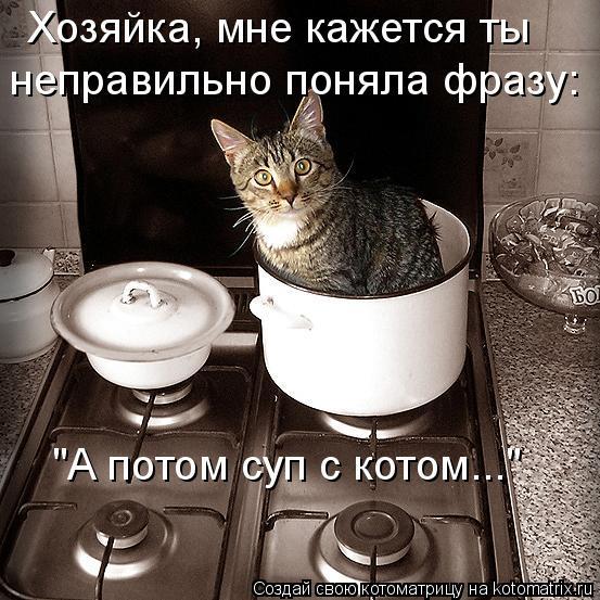 """Котоматрица: """"А потом суп с котом..."""" Хозяйка, мне кажется ты  неправильно поняла фразу:"""