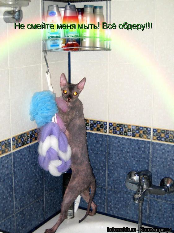 Котоматрица: Не смейте меня мыть! Всё обдеру!!!