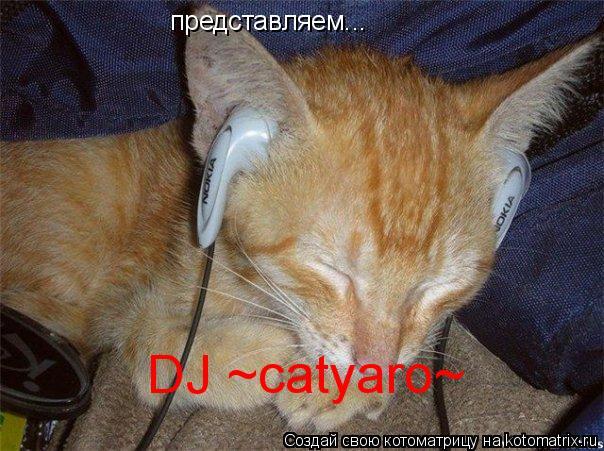 Котоматрица: представляем... DJ ~catyaro~