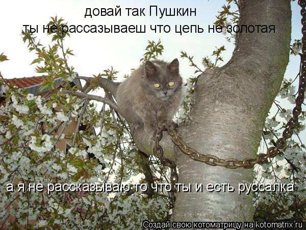 Котоматрица: довай так Пушкин ты не рассазываеш что цепь не золотая а я не рассказываю то что ты и есть руссалка