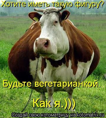Котоматрица: Будьте вегетарианкой.  Как я.))) Хотите иметь такую фигуру?