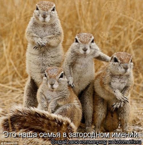 Котоматрица: Это наша семья в загородном имении
