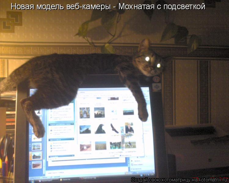 Котоматрица: Новая модель веб-камеры - Мохнатая с подсветкой